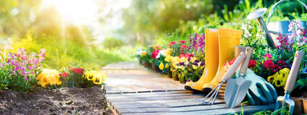 Kertész Pláza Blog