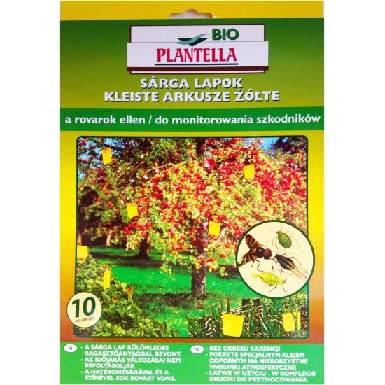 Sárga-lapok 24 x 17 cm Bio Plantella