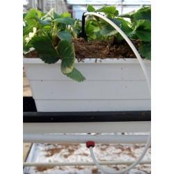 Mikrocső csepegtető gombákhoz 3/5 mm, lágy falú, fehér.