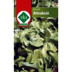 Saláta Attrakció 3 gr