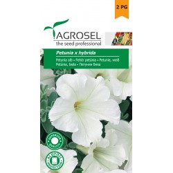 Petúnia fehér 0,75 gr Agrosel