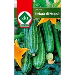 Cukkini Striato di Napoli 3 gr