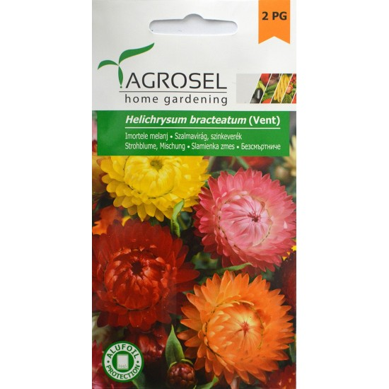 Szalmavirág színkeverék 1 gr Agrosel